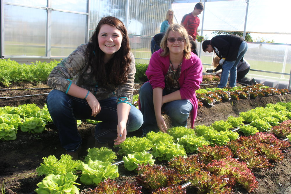 Fifth-graders learn to be healthy consumers